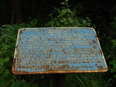 Washington–Braddock Road 1754–1756 Marker Photo, Click for full size
