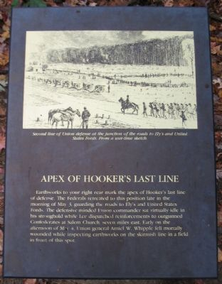 Apex of Hooker's Last Line Marker image. Click for full size.