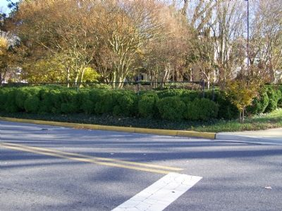 Boxwood Garden from a distance image. Click for full size.