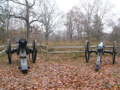 Cannons in Position Photo, Click for full size