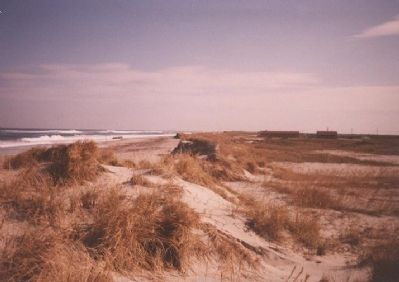 Pea Island, 2003 image. Click for full size.
