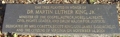 Oak Tree Planted in Honor of Dr. Martin Luther King, Jr. Marker image. Click for full size.