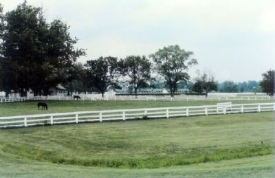 The Heart Of Race Horse Country Photo, Click for full size