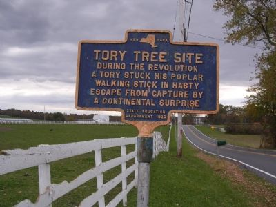 Tory Tree Site image. Click for full size.