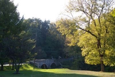 View of the bridge, from across the park Photo, Click for full size