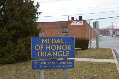 Medal of Honor Triangle image. Click for full size.