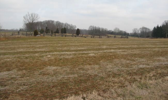 East Half of the Cornfield image. Click for full size.