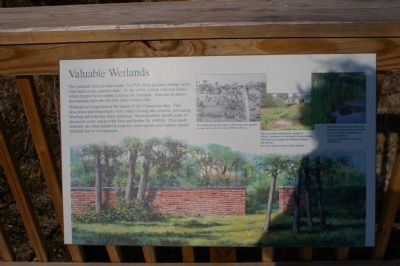 Valuable Wetlands Marker image. Click for full size.