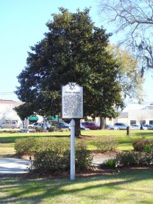 Peter Horry / Horry County Marker image. Click for full size.