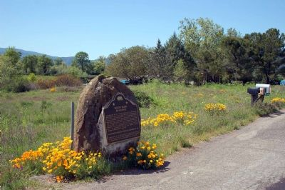 Marker with California poppies blooming in the spring time image. Click for full size.