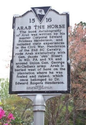 Arab The Horse Side of Marker Photo, Click for full size