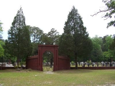 The Town of Ebenezer Cemetery image. Click for full size.