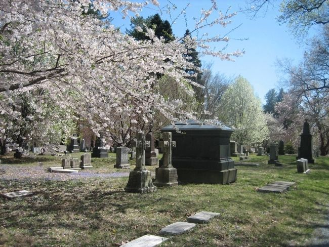 Flowering trees and shrubs in a natural setting were hallmarks of the 19th century cemetery. image. Click for full size.