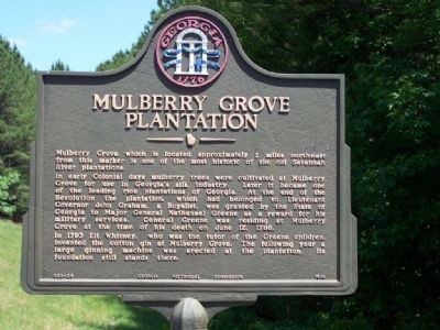 Mulberry Grove Plantation Marker image. Click for full size.