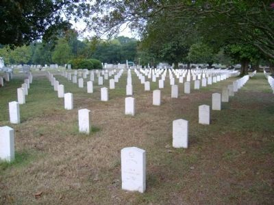 Confederate Soldiers Graves image. Click for full size.
