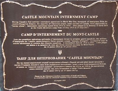 Castle Mountain Internment Camp Marker image. Click for full size.