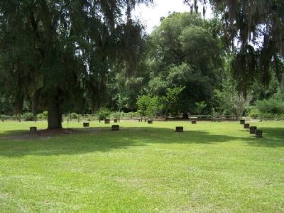 Woodmanston Plantation, today's remains Photo, Click for full size