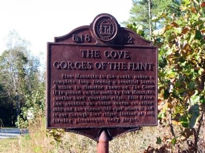 The Cove Gorges of the Flint Marker image. Click for full size.
