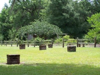 LeConte Botanical Gardens , and site of where Woodmanston Plantation's House once stood image. Click for full size.