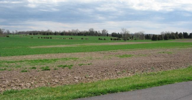 Rummel Farm Fields image. Click for full size.