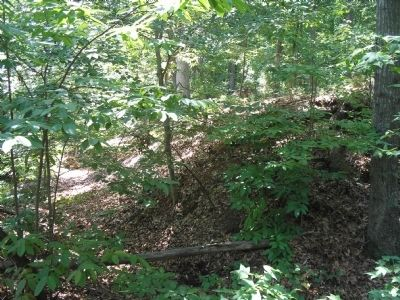 Confederate Fortifications at Young's Mill image. Click for full size.