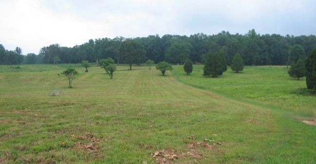 Restored Tree Line and Fields image. Click for full size.
