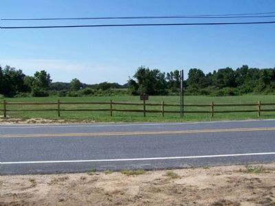 Field where the cannery once stood. image. Click for full size.
