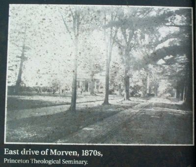 East drive of Morven, 1870s, image. Click for full size.