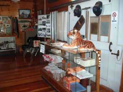 """Tigger""  Greeting  All  to The Museum Photo, Click for full size"
