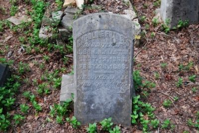 Caroline Francis Allston Tombstone Photo, Click for full size