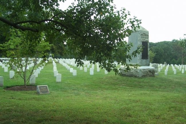 Arlington National Cemetery, Section 22, image. Click for full size.