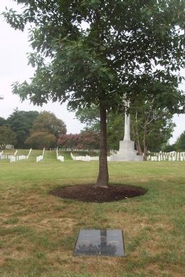 American Special Operations Forces Marker and memorial Tree image. Click for full size.
