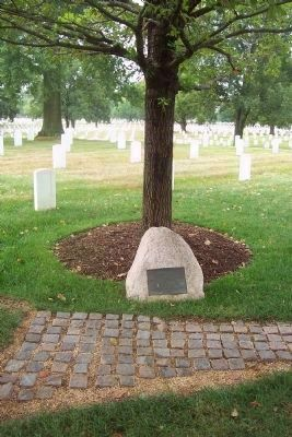 Memorial to US Airmen killed in Denmark Marker and memorial tree image. Click for full size.