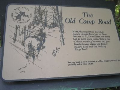 The Old Camp Road Marker image. Click for full size.