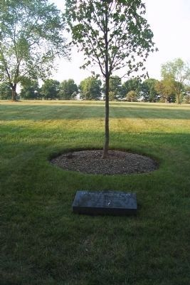 Operation Restore Hope Marker and memorial tree, ANC Section 60 image. Click for full size.