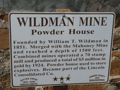 Wildman Mine Marker image. Click for full size.
