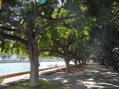 The Ala Wai Canal Promenade image. Click for full size.