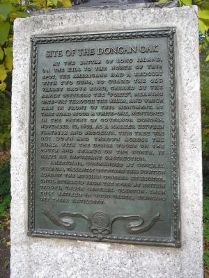 Site of the Dongan Oak Marker image. Click for full size.