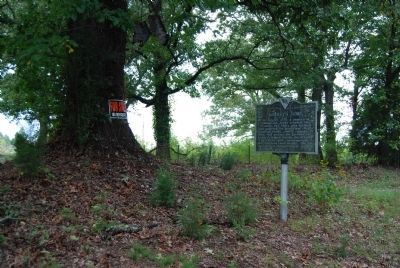 Lindley's Fort / Jonathan Downs Marker Photo, Click for full size