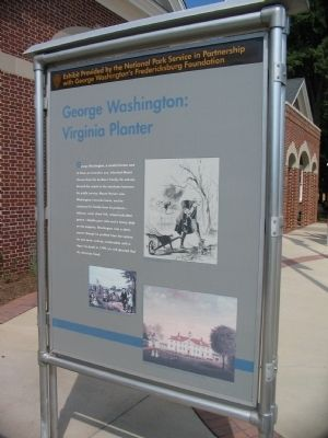 George Washington: Virginia Planter image. Click for full size.