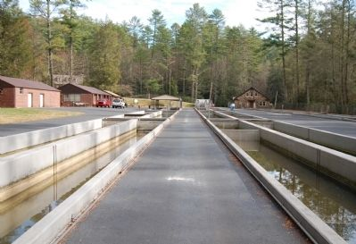 Walhalla State Fish Hatchery Photo, Click for full size