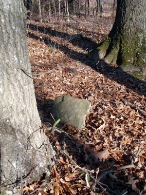 Fieldstone in the area of 10th Alabama Cemetery image. Click for full size.
