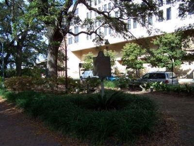 Landing of Oglethorpe and the Colonists Marker Photo, Click for full size