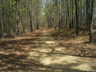 The Battle of White Oak Road Walking Trail Photo, Click for full size