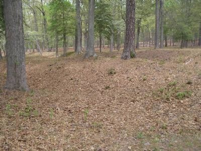 Earthworks at Cold Harbor Photo, Click for full size