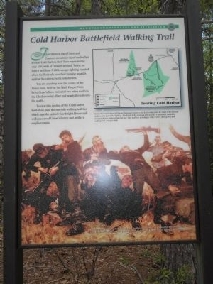Cold Harbor Battlefield Walking Trail Marker image. Click for full size.