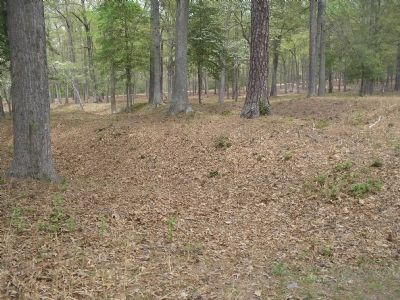 Earthworks on the Cold Harbor Battlefield image. Click for full size.