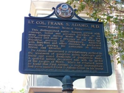 Lt. Col. Frank S. Adamo, M.D. Marker Photo, Click for full size