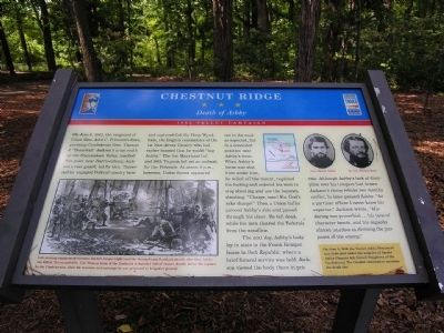 Chestnut Ridge CWT Marker Photo, Click for full size