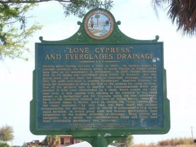 """Lone Cypress"" and Everglades Drainage Marker image. Click for full size."